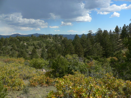 colorado-mountain-property